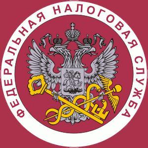 Налоговые инспекции, службы Пугачева